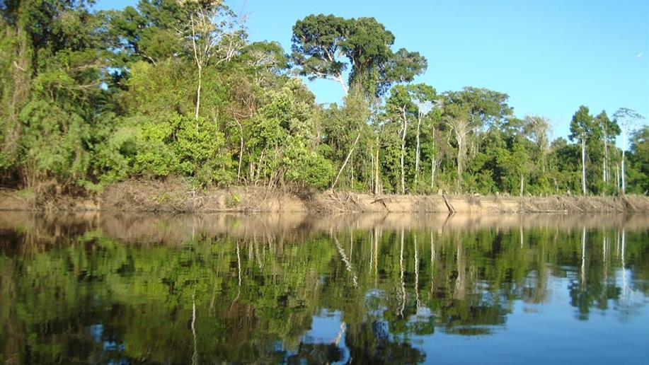 A caminhada pós-sinodal segue com diversas atividades no território amazônico